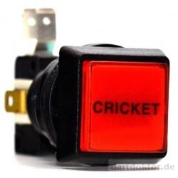 Taster Cricket