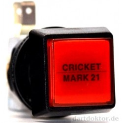 Taster Cricket Mark21